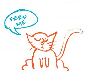"Cat saying, ""feed me."""