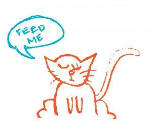 "Cat saying, ""feed me."""